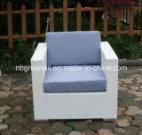 Insieme di vimini del sofà della mobilia esterna del rattan del giardino