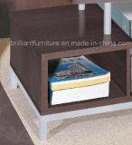 Stand moderne /Table (DMBQ011) des meubles TV de salle de séjour