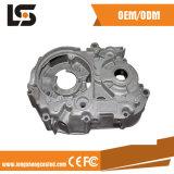 Het Afgietsel van de Matrijs van het aluminium voor de Toebehoren van de Auto met CNC die Delen machinaal bewerken