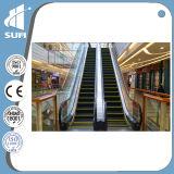 Escada rolante interna da segurança com o elevador da soma do preço do competidor