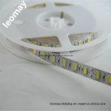 Striscia a più scelte di colore SMD5050 LED con CE RoHS