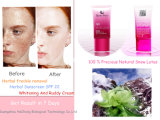 Remoção natural cosmética Sunblock &Herbal 22 SPF dos pontos das essências dos lótus da neve que Whitening o creme