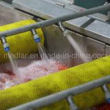 Ягода волка Goji здоровой еды Lbp мушмулы органическая