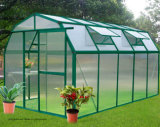 Ausgeglichenes Low Iron Greenhouse Glass mit 3.2mm, 4mm, 5mm, 6mm Mistlite Nasiji Design