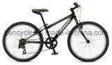 熱い販売山Bike/MTBのバイクまたはマウンテンバイクBicycles/MTBの自転車かAtb Bike/CTBのバイク