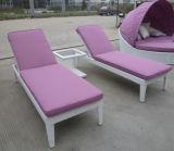 H-2016屋外の家具のLoungerの中国製製造業者