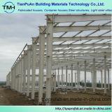 Edificio de marco de acero de hoja de acero del bajo costo