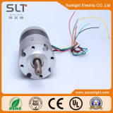6V-36V BLDC Electric Brushless Gleichstrom Geared Motor für Tools