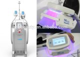 Blanco Cryolipolysis que adelgaza la máquina del cuerpo que adelgaza el equipo para la Mujer
