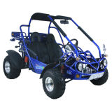 CEE / EPA Coc Certificado de 300cc carretera buggy legal