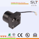 24V High Torque DC Electric Stepping Motor