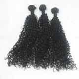 Extensión sintetizada rizada rizada vendedora caliente de la peluca del pelo de la onda profunda
