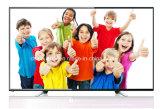 TV portative avec la couleur 19-Inch TFT-LCD TV (19D08A) en format large de 16:9