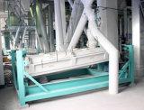工場直売からの高容量3t/Hのマスの供給のプラント