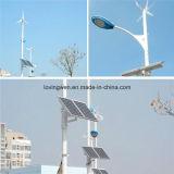 Projeto novo para a iluminação de rua do diodo emissor de luz do vento solar, turbina de vento 300W