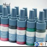 De permanente Lippen van de Wenkbrauwen van de Make-up kleurt de Beste Inkt van de Tatoegering met pigment