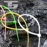 Étiquette remplaçable du serre-câble PA66 avec le fournisseur de la Chine