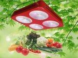 O diodo emissor de luz da relação do 7:1 da ESPIGA 300W da lâmpada 4 da planta cresce a luz
