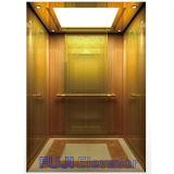 Elevación profesional del elevador del pasajero de FUJI
