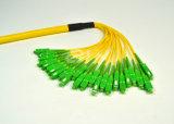 Vlecht van de Optische Vezel van het Netwerk Sc/Upc van de toegang Singlemode Simplex
