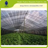 330GSM сеть тени ленты 80%, аграрная сеть, ткань тени