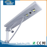 IP65 impermeabilizzano 70W l'indicatore luminoso solare del giardino della lampada pura di bianco LED