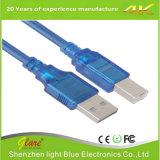 Am к кабелю USB 2.0 принтера Bm