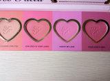 Demasiado Amor cara al ras de larga duración 16 horas Blush Armario cosmética colorete paleta