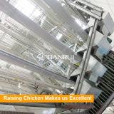 Tianrui 새로운 올리는 장비 유형 자동적인 보일러 감금소 시스템