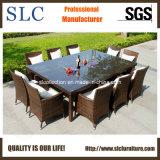 Anuncio publicitario al aire libre de mimbre de los muebles de los muebles al aire libre (SC-A7197)