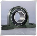 Eisen-Form-Gehäuse, eingehangene Geräten-Kissen-Block-Peilung