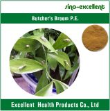 Broom Root Extract des Metzgers mit Natural Ruscogenins