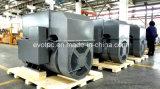 저잡음 디젤 엔진 발전기를 위한 Evotec 발전기