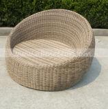 Sofa en osier Mtc-288 réglé de meubles de jardin
