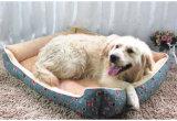 Base do cão do canil do vaqueiro, base do gato