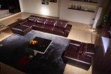 El Sofá de Cuero de Lujo Más Nuevo 2015 (N801)
