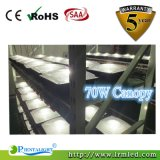 Fabricant LED encastré plafonnier 70W LED Canopy Light