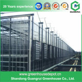 Casa verde de vidro do sistema de controlo automático quente da venda para o vegetal