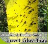 Klebrige Blockierkleberkarten zur GewächshausSchädlingsbekämpfung, umweltfreundlich