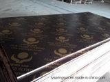 hoja Shuttering hecha frente película negra de la madera contrachapada de 18m m