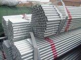 Tubulação de aço galvanizada tubulação de carbono do material Q235 ERW da estrutura