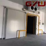Selbst-Schieben der Tür für Kaltlagerungs-/Cold-Raum/einzelnes Blatt