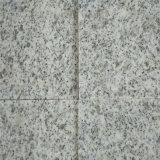 Het witte Gevlamde Graniet van de Sesam G603