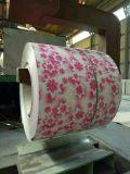 Fleurit entièrement enduit dans les bobines enduites d'une première couche de peinture par acier de la couleur PPGI