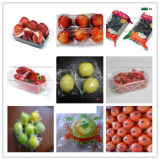 Am meisten benutzter Multifunktionsfrucht-Beutel-Verpackmaschine-Preis