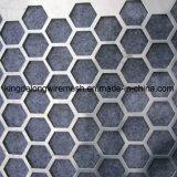 Maglia perforata esagonale del metallo dell'acciaio inossidabile