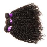 Cheveu bouclé malaisien de vison 4 paquets de 8A de pente de Vierge de cheveux humains d'onde de la Reine de produits capillaires de cheveu malaisien profond non transformé de Vierge