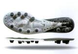 [هيغقوليتي] مصنع كرة قدم نعل