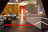 Bureau de réception moderne de luxe de salon de système de coiffeur contre-