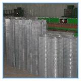 Prezzo saldato galvanizzato della rete metallica